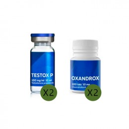 Steroidkurs für Anfänger 1